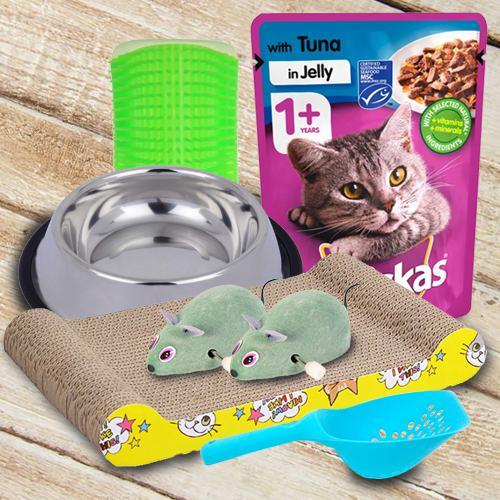 Remarkable Kitten Gifts Hamper