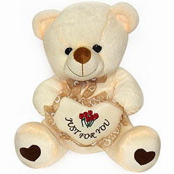 Handsome Bear With Heart