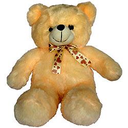 Wonderful Teddy Bear for Kids