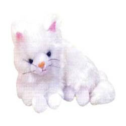 Remarkable Kitty Soft Toy