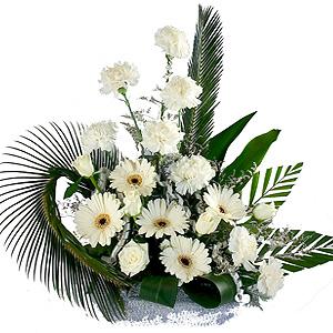 Cheerful Bunch of 2 Dozen White Floras